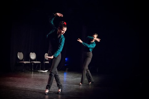 studio danse FlamCo 2015-4713 (Small)